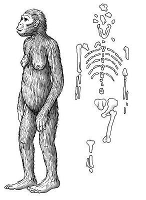 Metody datowania ludzkich skamielin